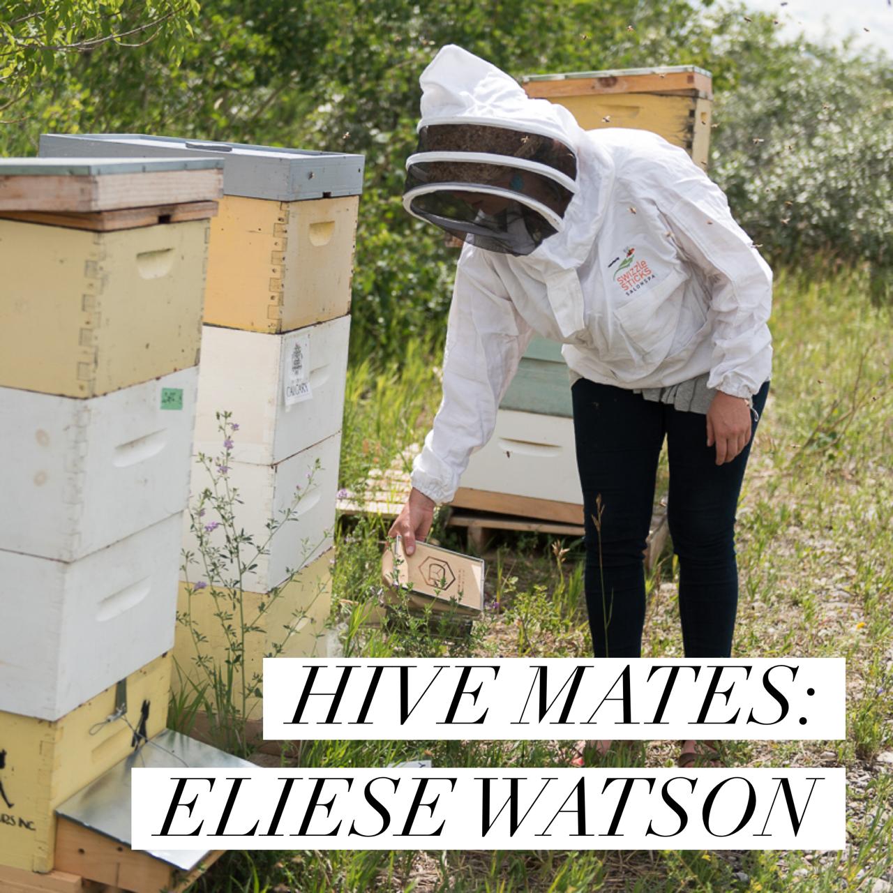 Elias Watson of ABC Bees