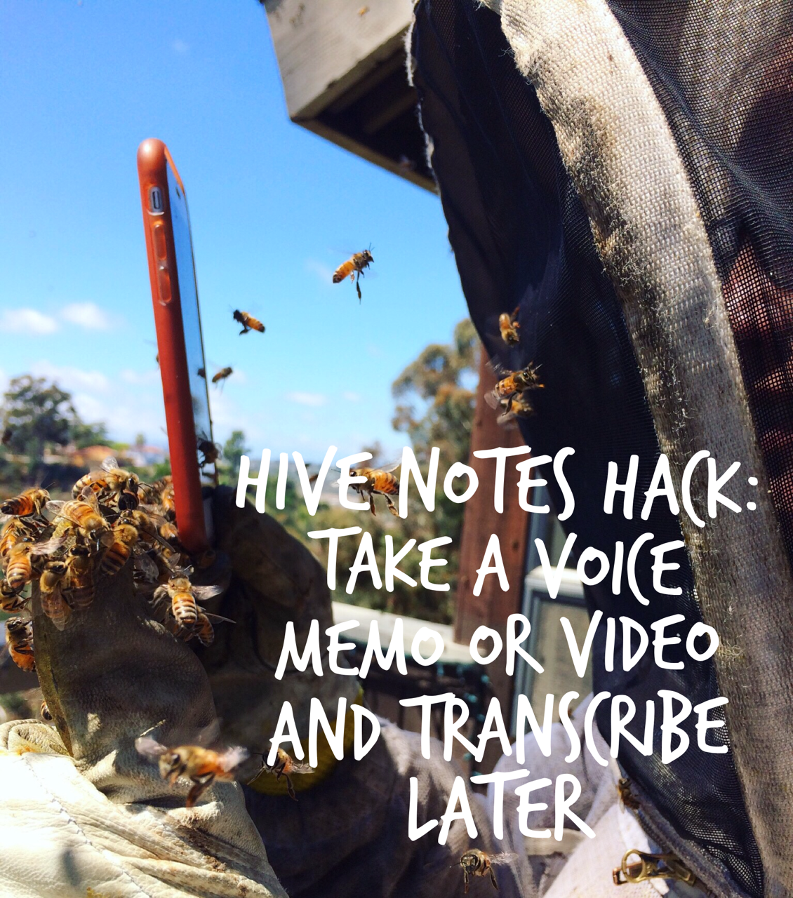 Beekeeping Lifehack: Use an iPhone to Take Hive Notes