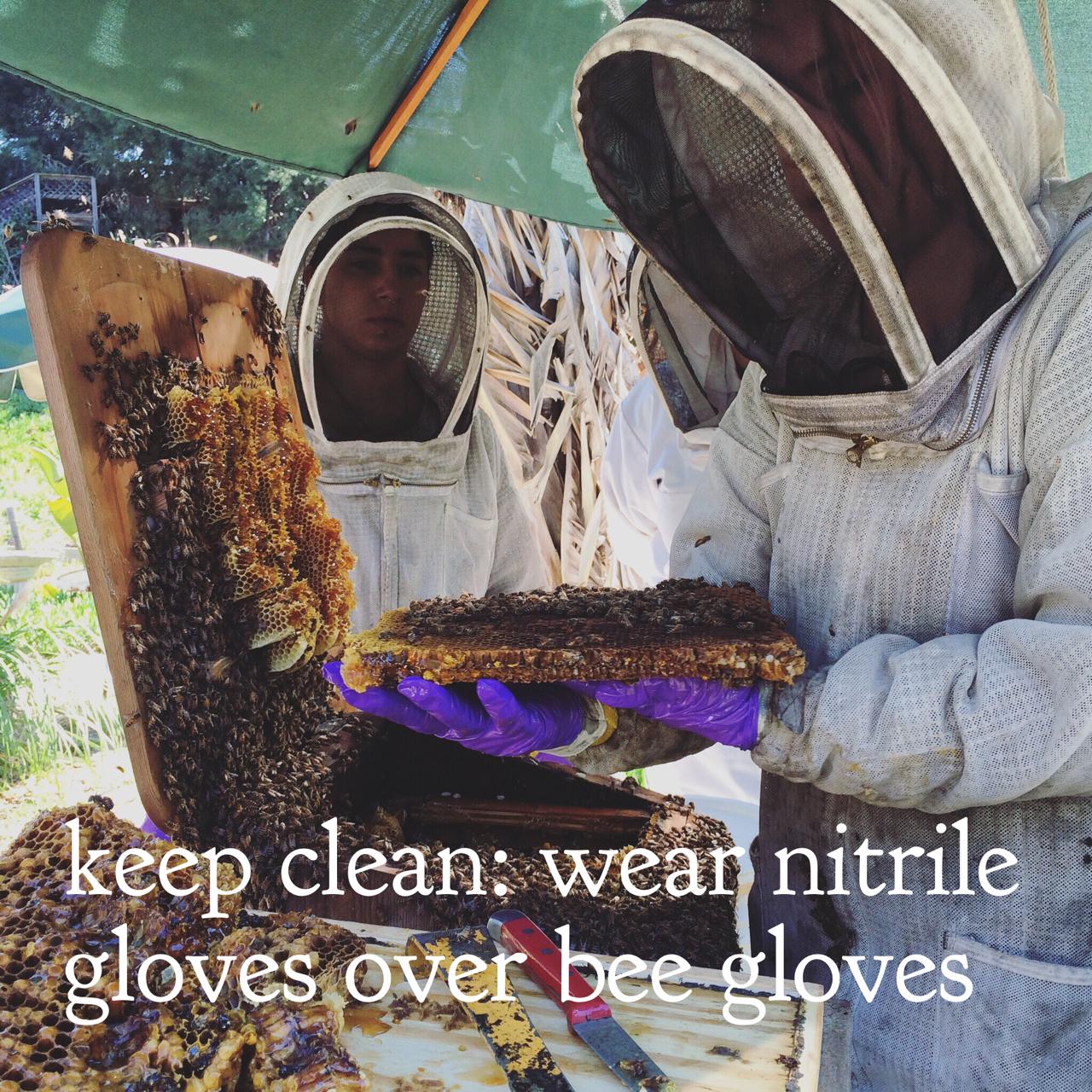 Beekeeping Lifehack: Use Nitrile Gloves to Keep Clean