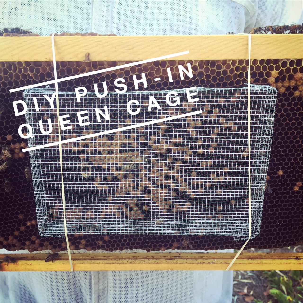Beekeeping Lifehack: DIY Push-In Queen Cage