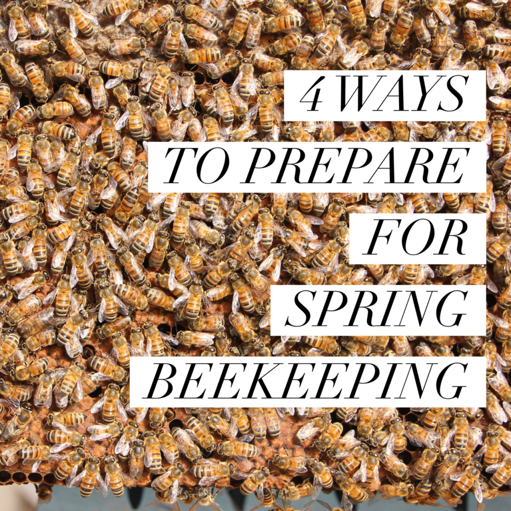 4 ways to prepare for spring beekeeping