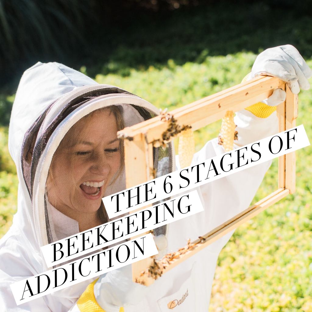 The 6 Stages of Beekeeping Addiction