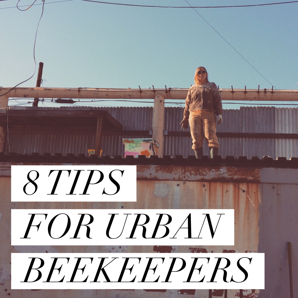 8 TIPS FOR URBAN BEEKEEPERS