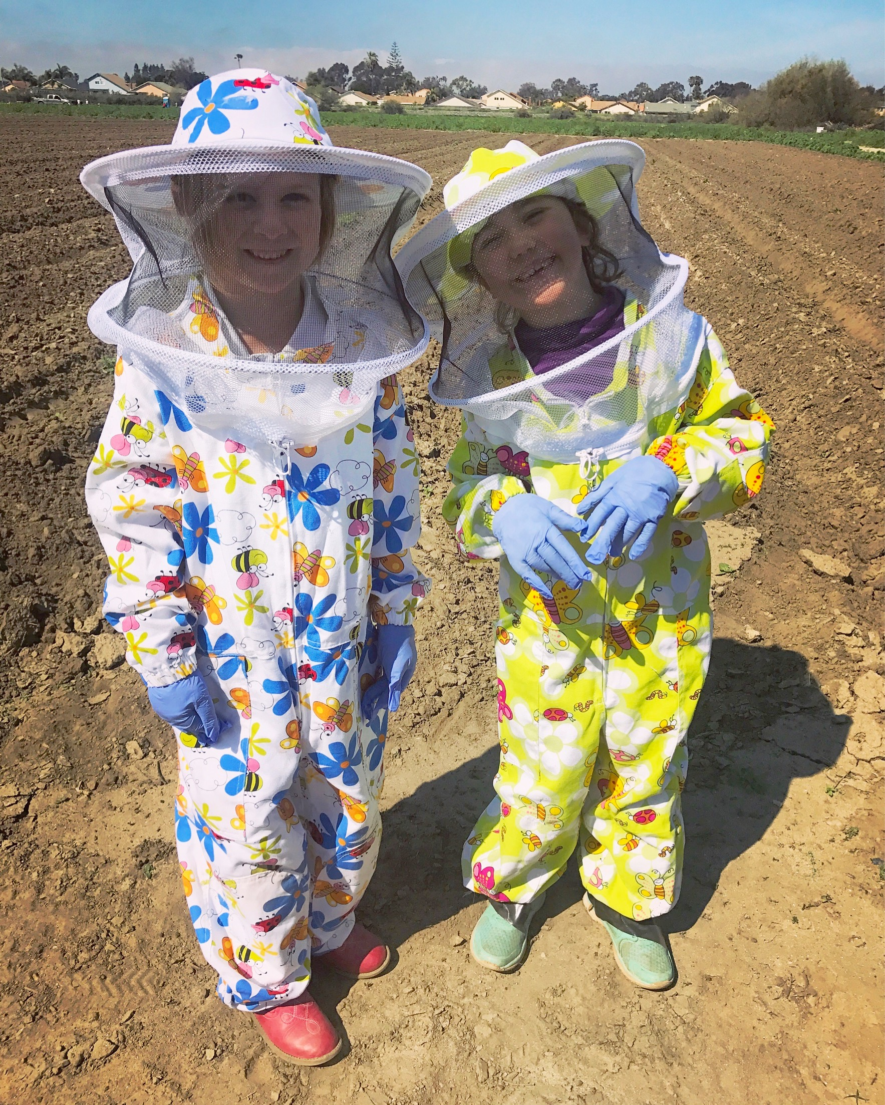 WHAT KIND OF BEE SUIT SHOULD I BUY?