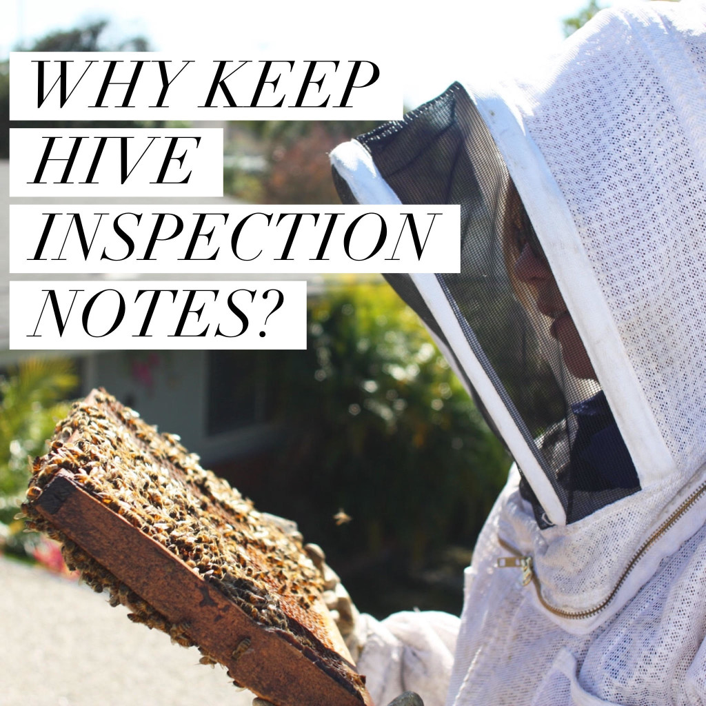 Why keep hive inspection notes?