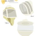 Veil Graphics